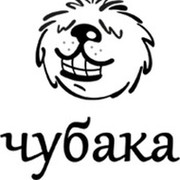 "Интернет-магазин ""Чубака"" group on My World"