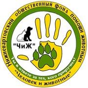 """Фонд помощи БЕЗДОМНЫМ животным """"Человек и животные"""" (""""ЧиЖ"""") группа в Моем Мире."""
