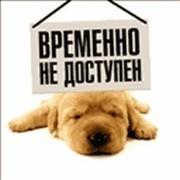 Богдан Сенюшин on My World.